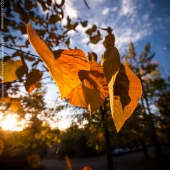 brian-hirschy-photography-fall-photography-2012-10-of-20
